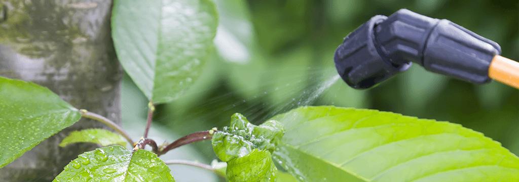 chemische onkruidbestrijding
