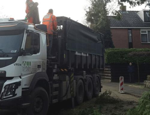 Wankelende boom in de Bremstraat in Dordrecht