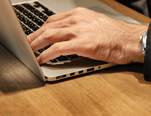 Protocol voor beheersing Japanse Duizendknoop in 2019 verwacht