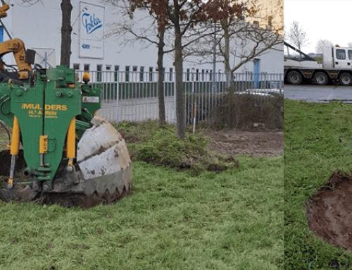Herplanten van bomen met speciale verplantingsmachine in Papendrecht