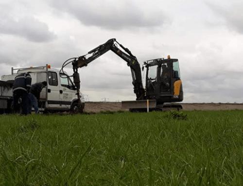 Imposant aanplantproject van bomen op 1 hectare in de Nieuwe Dordtse Biesbosch