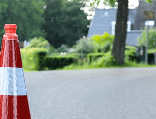 Japanse Duizendknoop rukt op in Rotterdam