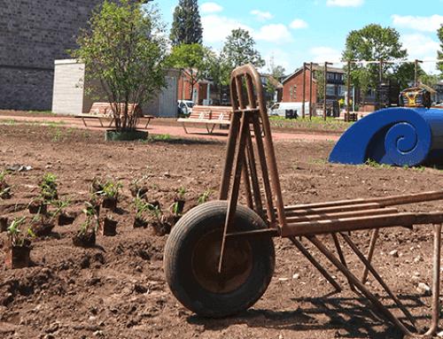 Gevarieerd nieuw 'stadspark' in Papendrecht | Deel 2