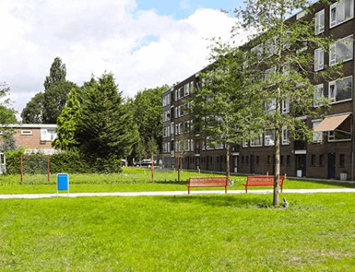 Indrukwekkende herinrichting rondom woningen Schiebroek | Rotterdam | Deel 3