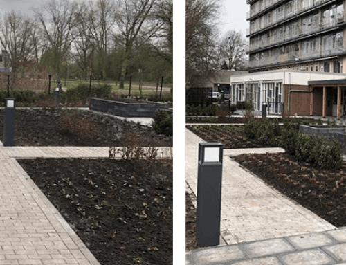 Tuinaanleg Wilgenstaete | Schiebroek in Rotterdam | Deel 3