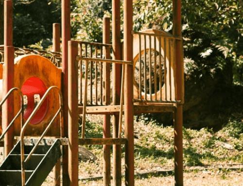 Het nut van natuurspeelplaatsen in de woonwijk