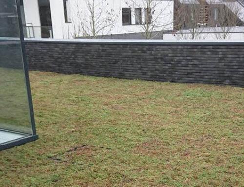 Prachtig groen sedum dak bij deze woning in Hendrik-Ido-Ambacht